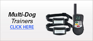 Multi-Dog Trainers