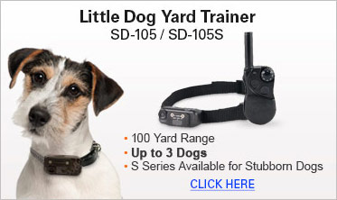 Little Dog Yard Trainer