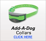 Add-A-Dog Collars