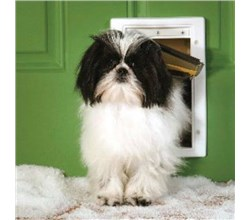 Small Dogs  petsafe extreme weather door