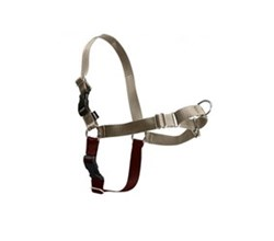PetSafe Leashes Harnesses petsafe easy walk harness