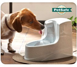 PetSafe Fountains drinkwell pww00 14402