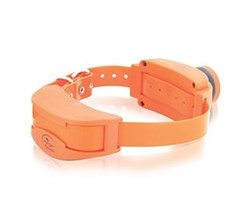 Upland hunter A Series petsafe sdr ab