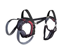 Dog Harness solvit carelift small full body harness small