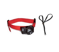 Best Sellers petsafe pif 275 19 bundle with gentle leader headcollar